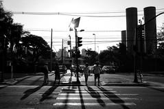 Atravessando o entardecer (renanluna) Tags: pessoas people rua street sol sun luz light monocromia monochromatic pretoebranco blackandwhite pb bw sopaulo 011 sp br 55 fuji fujifilm fujifilmfinepixx100 x100 renanluna