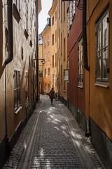 Dappled light (Helena Normark) Tags: sweden stockholm gamlastan sverige oldtown a7 voigtlnder grnd voigtlanderultron35mmf17 ultron35mmf17 sonyalpha7 colorfulalley