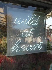wild at heart (duncan) Tags: neon florist neonsign wildatheart florists