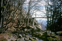 Aux cascades d'Orgon (maxguitare1) Tags: bridge france puente cycling stream minolta ponte ciclismo pont ru backpacker ruscello gard corriente randonneur mochilero ruisseau cvennes aigoual
