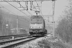 Bivio/P.C. Valle set 2 #4 (train_spotting) Tags: alstom sncf astride captrain e436338mf nikond7100 bb436338 biviopcvalle cuzzego