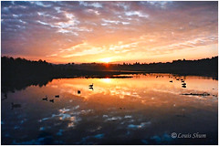 Sunrise in Burnaby Lake 1995.. (Louis Shum) Tags: morning blue sky orange reflection nature beautiful vancouver sunrise 35mm landscape geese nikon bc widescreen wideangle bluesky f16 1250 f601 burnabylake nicepicture louisshum