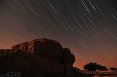 stars (Mohammed Albargash) Tags: star بر نجم ستار اشجار ليل نجوم حياة طلح