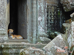 Preah Vihear Temple 3 - Preah Vihear.jpg