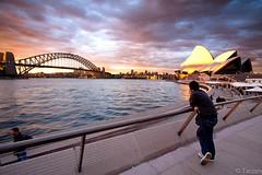 Sunset at harbour... (Tarzan!!!) Tags: viaje bridge holiday puente harbour sydney australia cielo nubes operahouse hdr robado casadelaopera