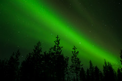 Aurora Borealis (totheforest) Tags: nightphotography winter snow green forest stars vinter europa europe nightshot sweden aurora skog sn northernlights auroraborealis forestroad nattbilder grn norrsken norrbotten stjrnor cathysbirthday skogsvg nikond90 junosuando nikkorafsdx18105mmf3556gedvr coppercloudsilvernsun kurkkiovgen 46thforestfinestcontest