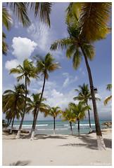 21052012-IMG_9441 (jacques.kayser) Tags: paris france vacances guadeloupe tokheim departementsdoutremer