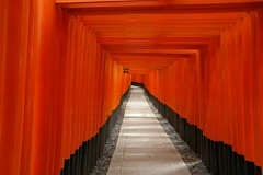 Vanishing point (Johan_Leiden) Tags: japan kyoto gate shrine gallery inari path religion covered shinto torii fushimi