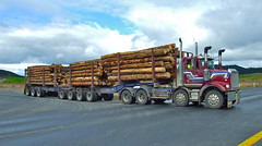 Huge logger Crossing Highway One (Paul Vandenberg) Tags: star highway fuji logging finepix nz western huge logger trucking