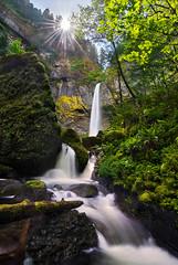 Shine Through (Michael Bollino) Tags: oregon creek flow waterfall nikon northwest wind hiking gorge columbiarivergorge elowah 800e fallsspray