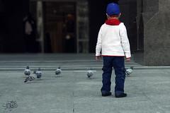 (عفاف المعيوف) Tags: طير طفل طفولة طيور حمام أطفال حمامة براءة