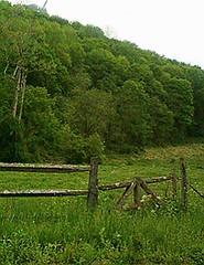 The Old Gate (Peachhead (4,000,000 views!)) Tags: old green rural fence countryside wooden spring gate pennsylvania farm farmland pa pasture lehighvalley countryroad northamptoncounty slatebelt lowermtbetheltownship garrroad