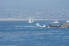 Monterey Bay (Niki Gunn) Tags: california ca monterey pentax may montereybay 2012 k5 loverspointbeach