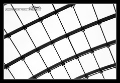 Structure (Abdullah Aldahami Photography) Tags: bw white canada abstract black calgary glass ed nikon nikkor vr afs dx d90 f3556g 18105mm