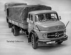 Mercedes L322 (tamahaji) Tags: truck mercedes benz dof canvas huge trailer rare schuco 118 diecast minichamps l322