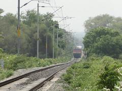 Red devil in Green jungle (Karthik Abbilash) Tags: india ed tn tamilnadu erode indianrailways irfca 16525 22381 wap4