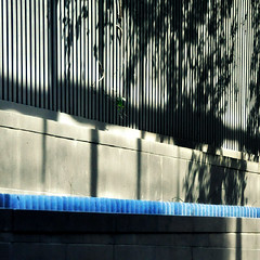 music in leaves (SteffenTuck) Tags: blue trees lines stone outside grey morninglight shadows exterior melbourne walls retaining steffentuck