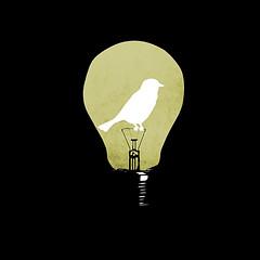 let your ideas take flight (jerbing33) Tags: bird idea freedom think flight