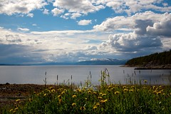 Forsommer (estenvik) Tags: beitstadfjorden erikstenvik estenvik fjord nordtrndelag norway steinkjer trondheimsfjorden paradisbukta himmel sky skyer clouds fjre beach