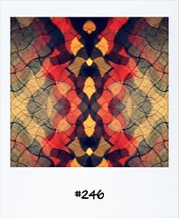 """#DailyPolaroid of 31-5-12 #246 • <a style=""""font-size:0.8em;"""" href=""""http://www.flickr.com/photos/47939785@N05/7342729950/"""" target=""""_blank"""">View on Flickr</a>"""