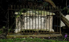 No escape (Breboen - I SUPPORT THE EU) Tags: old tree london grave graveyard stone fence dead death buried greenwich gothic pins spooky hyacinth tombe