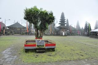 bali nord - indonesie 59