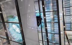 Starry Stairs (thewhitewolf72) Tags: modern person licht mann fahren beleuchtung innenstadt kassel rolltreppe sensoryoverload einkaufszentrum runter grell