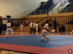 stefanou_15_5_2016_knockdown_32