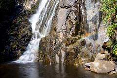 Stevenson's Falls, Marysville (nigel0577) Tags: autumn water waterfall sony falls stevenson carl alpha marysville ziess 2470 a99