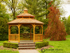 Garden Gazebo (moelynphotos) Tags: gazebo garden park trees deciduoustrees grass bushes shrubs wooden springtime landscape green red surburban newjersey relaxingplace nopeople moelynphotos