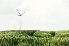 windkraft I (bauingenieuse) Tags: sun green mill windmill station spring corn warm power wind energie hell grain feld himmel generator bauer grn cereals windrad sonne turbine windturbine springtime gros frhling rotor acker windkraft rauschen getreide gerste ruhe frhsommer erneuerbare wintergerste