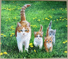 Happy Tails (Persis Clayton Weirs) (Leonisha) Tags: green grass cat chat puzzle gras katze grn jigsawpuzzle catfamily katzenfamilie