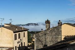NEBBIA NELLA VALLE   ---   FOG IN THE VALLEY     ---    EXPLORE (Ezio Donati) Tags: morning panorama nature fog landscape natura nebbia lazio mattina canalemonterano nikon810