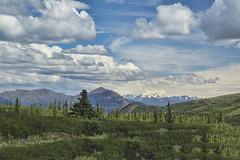 Denali Park, AK  25 (Largeguy1) Tags: blue sky mountains clouds canon landscape mark iii ak 5d approved denalipark