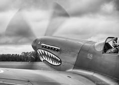 The Mustang's gnashers... (Dan Elms Photography) Tags: canon fighter ww2 spitfire mustang goodwood warbird propellor 70d boultbee goodwoodaerodrome canon70d danelms norwegianspitfire talldan76 danelmsphotography boultbeeacademy