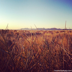 View from Hoodia Lodge (kamjey) Tags: travel mountains yellow photography desert fields namibia hoodialodge