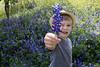 jackbluebonnets1 (woodyta) Tags: jack bluebonnet 4yrs