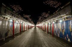Asakusa by Night (david3br) Tags: japan night lights tokyo nikon market path sigma shops asakusa 175028 d7000
