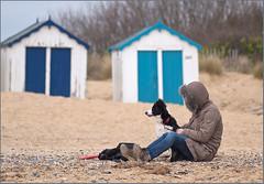 Lose Face... (Mel Low) Tags: dog beach loseface southwoldhuts