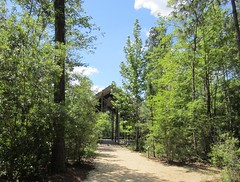 The Pinecote Pavilion at the Crosby Arboretum (bluerim) Tags: mississippi pearlriver mississippistateuniversity euinefayjones picayune pinecotepavilion thecrosbyarboretum