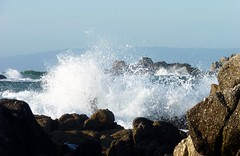 Asilomar waves (bulldog008) Tags: ocean california blue sea white motion texture nature wet water beautiful stone coast monterey surf waves break power pacific grove crash rocky scene spray shore coastline splash asilomar