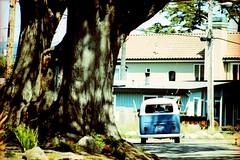 Joyride thru Santa Cruz, 2012 (ryantatar) Tags: santacruz bus film vw analog 35mm volkswagen surfers surfculture