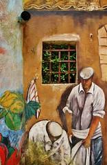Murales (Francesco Lo Presti) Tags: finestra sicily palermo murales colori tubo sicilia prizzi affresco tegole grondaia dipinto rampicante lavoratori operai scarico francescolopresti loprestifrancesco