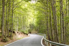 (Ignaciocenteno) Tags: verde primavera canon rboles carretera 7d rbol castao casillas vila castillaylen titar valledeltitar ignaciocenteno