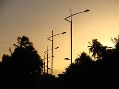 150.000 visitas... obrigada! (Ruby Ferreira ) Tags: sunset coconut silhouettes prdosol coqueiros silhuetas notreatment 25yearsofmarriage 25anosdecasamento praiadagauxumaal brasilemimagens