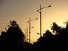 150.000 visitas... obrigada! (Ruby Ferreira ®) Tags: sunset coconut silhouettes pôrdosol coqueiros silhuetas notreatment 25yearsofmarriage 25anosdecasamento praiadagauxumaal brasilemimagens