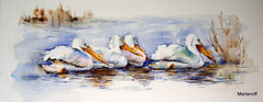 Pelicanos (Marianoff) Tags: art watercolor painting arte aquarelle watercolour papel pintura aquarell akvarel marianoff mareiva