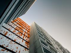 Silhouette (96dpi) Tags: orange berlin silhouette illustration concrete olympus beton omd em5 beklebung