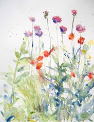 May flowers 4  * (Annette Henbery) Tags: flowers plants plant flower floral grass leaves garden painting spring may poppy bloom watercolour greenery forgetmenot blooms allium hyacinth papaver orientalpoppy geum myosotis papaverorientale stipa ornamentalonion purplesensation stipatennuisima
