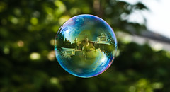Bubble (Mr.Dias) Tags: blue portrait house colour reflection green nature yellow purple bryan bubble dias lightroom